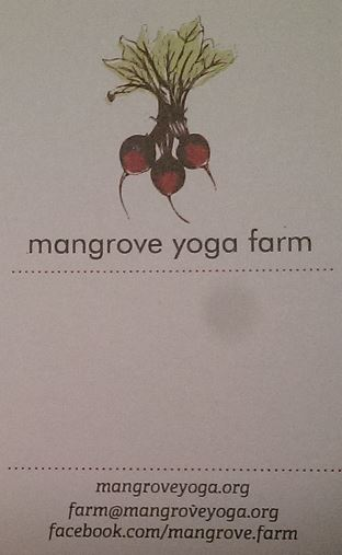 Mangrove Yoga Farm
